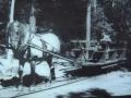 Zdjęcie przedstawiające starą kolejkę konną