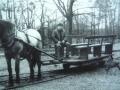 Zdjęcie przedstawiające starą kolejkę konną 3